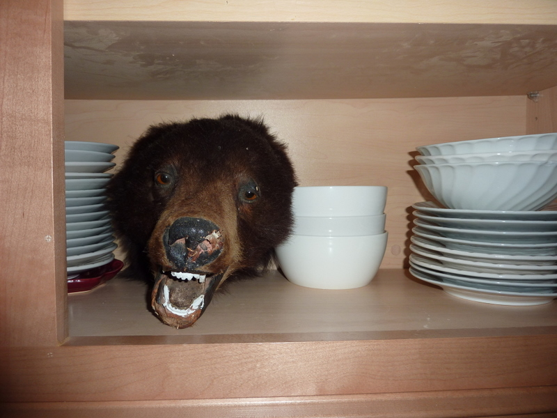 A Bear In The Cupboard